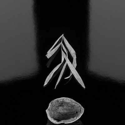 无语 profile image