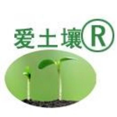 aiturang profile image
